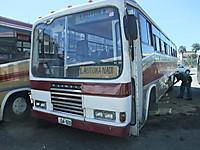Dscf3115
